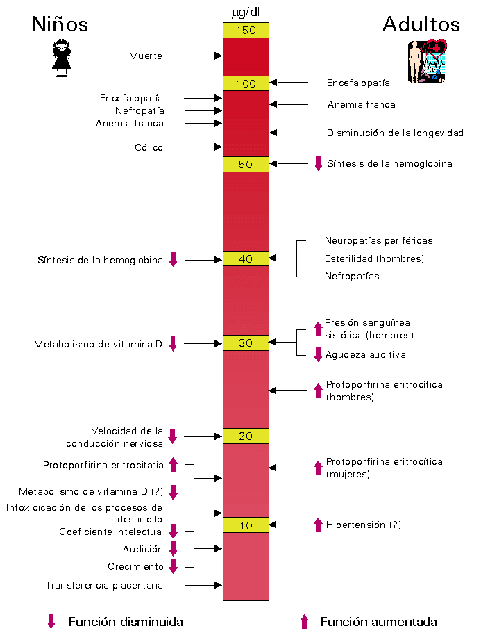 Nivel-de-intoxicación-por-plomo