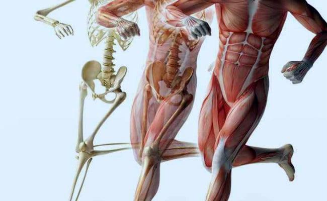 acupuntura para el dolor