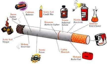 efectos-tóxicos-del-cadmio