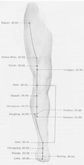 meridiano estómago inferior