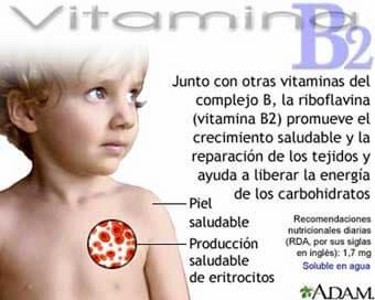 riboflavina vitamina B2
