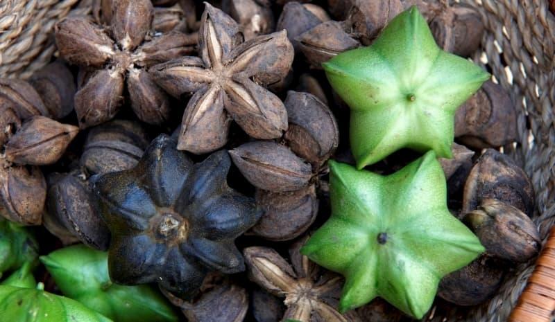 semilla-sacha-inchi