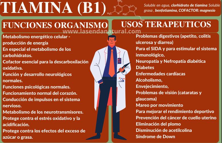 Tiamina Vitamina B1